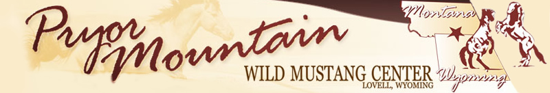 Pryor Mountain – Wild Mustang Center